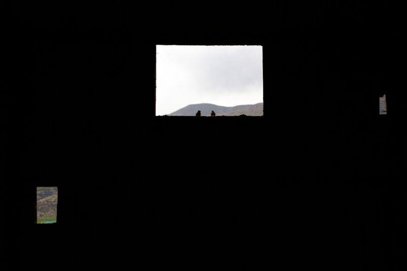 jordanvalley-3122_preview.jpeg